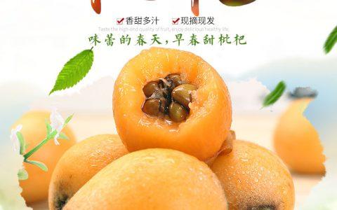甘福园 攀枝花米易甜枇杷 新鲜水果性价比评测