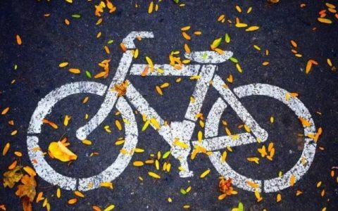 骑着共享电车,用着共享充电宝,那么这个共享纸巾你用过吗?