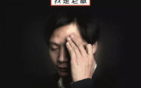 """中国,有3000万""""雷军""""在假装淡定"""