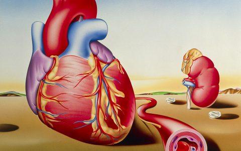 8个高血压误区,条条致命