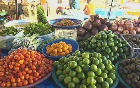 《环球农业采访》走进老挝 老挝的菜市场