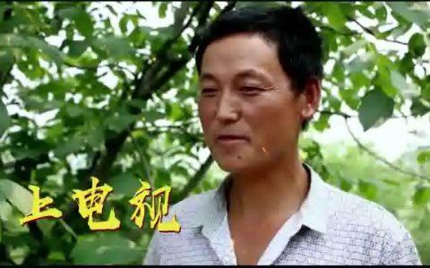 《中国农资秀》|金猪迎新春 农人大联欢—农人贺年会 团圆过大年