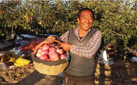 品质种植服务中国农民,状元名品大赛再踏征程
