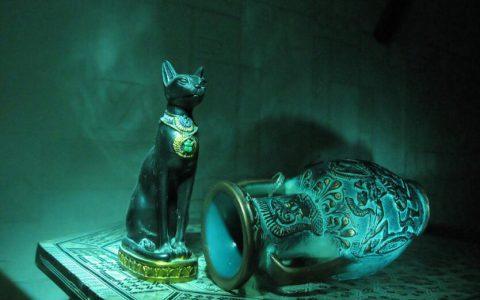 一只波斯猫古董的价值