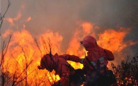 """凉山30名队员遇""""轰燃"""":如果在其它国家,消防员会如何抉择"""
