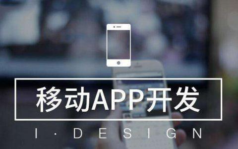 武汉安卓APP/苹果IOS APP开发定制公司怎么选择