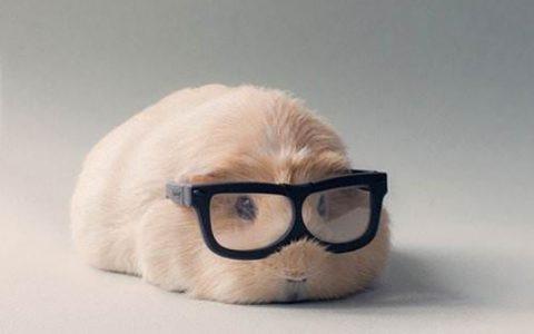 眼镜没坏度数也够,为什么还要建议定期更换