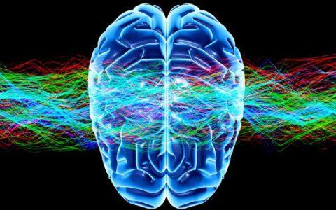 """科普趣闻:人的大脑如何在生存中保护不受""""人最终会死亡""""这一事实的影响"""