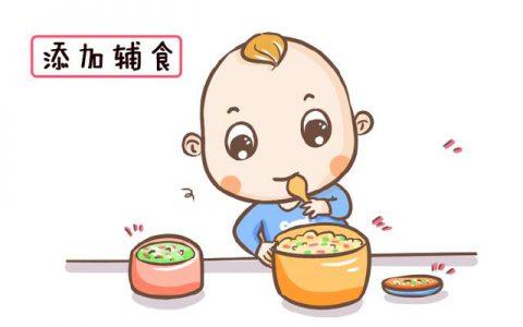 哪些食物对宝宝的营养最好