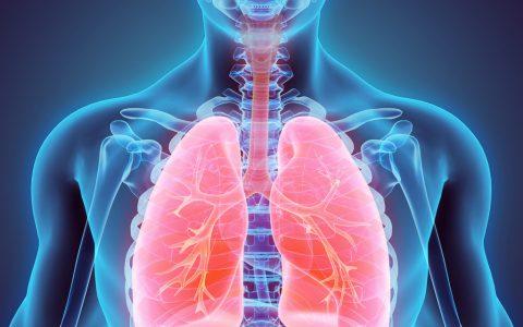 肺脏如果有了病毒,一般病因出自哪?