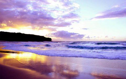 独一无二的紫色海滩,在加州,享受蓝天白云下的粉紫梦幻