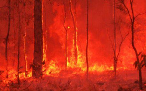 澳大利亚大火可能改变整个地球的气候