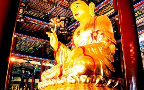 """佛祖是""""丐帮头""""的儿子--佛经的要义是教人当奴才"""