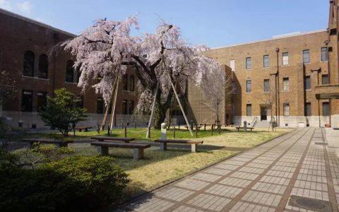 从国立名门到贵族女校,日本女子大学特辑