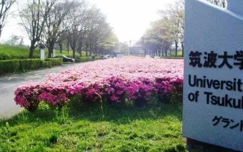 """被誉为日本""""硅谷""""的学校,筑波大学"""
