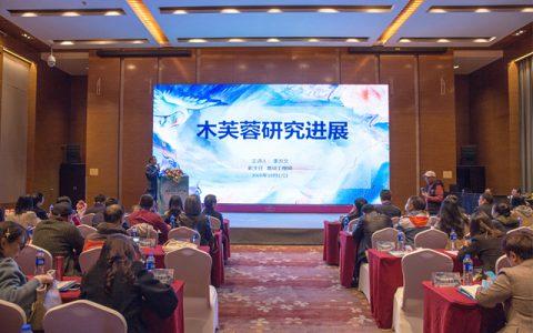 2020第三届天府芙蓉国际研讨会在蓉召开
