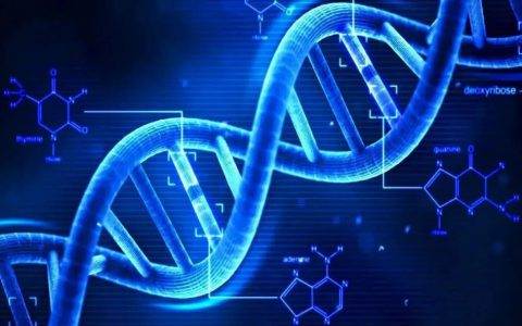 研究开发工程DNA,根除血液癌症干细胞