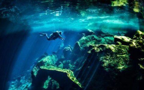 未来旅游观光胜地会是海底世界吗?
