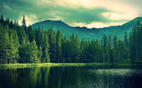 陈根:自然愉悦法,用亲近自然来改善抑郁