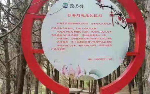 河南卫辉:一条全国独有的路