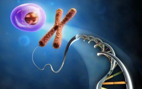 不可成药致癌基因,从突破到再突破